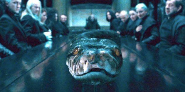 «Harry Potter»: Nagini, le serpent de Voldemort, était une femme (et on