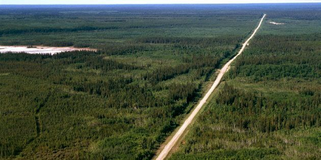 Aerial view of Highway 5 in a segment of Wood Buffalo National Park in the Northwest