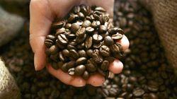 Γιατί αυτός ο καφές είναι ο ακριβότερος στον κόσμο και κοστίζει 67