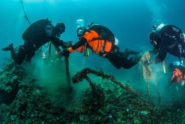 Χαλκιδική: Πώς διέσωσε μία σπάνια αποικία ιππόκαμπων η Ghost Fishing