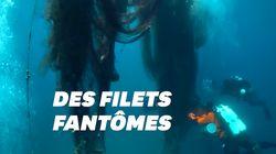 Ces plongeurs ont ramassé 2 tonnes de filets de pêche polluants en