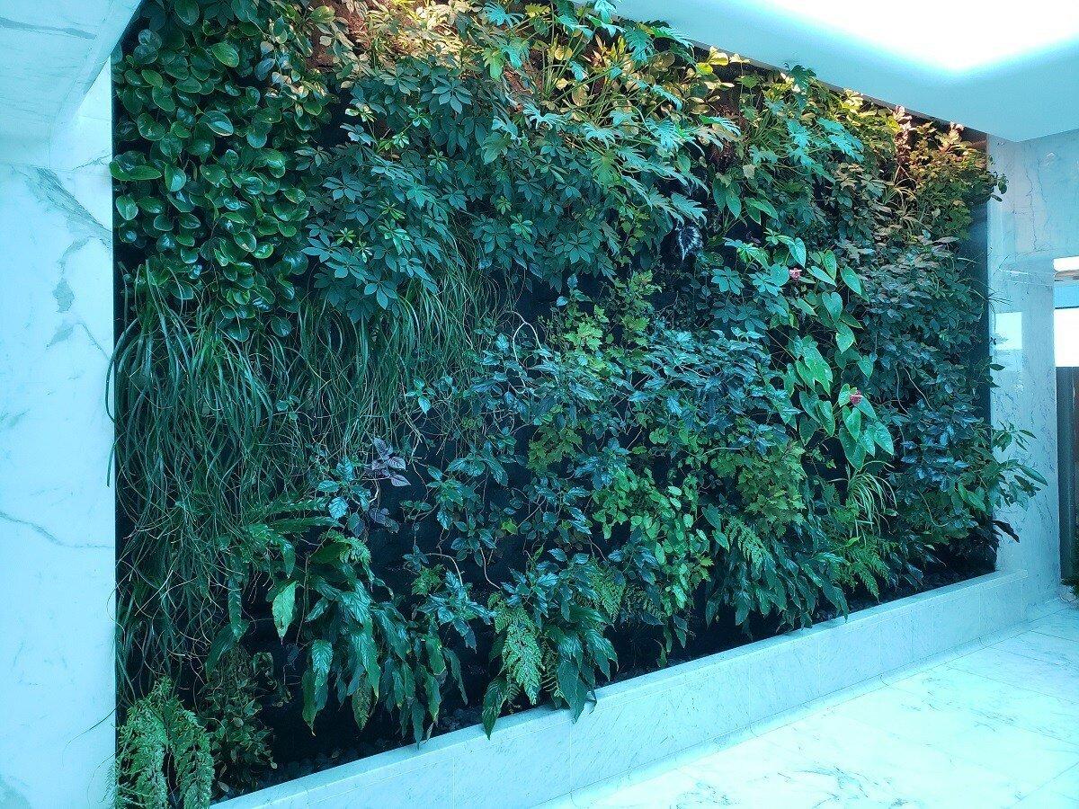 櫃台的對面有樹葉牆,給我一種很像美國運通百夫長貴賓室 (AMEX Centurion Lounge) 的感覺