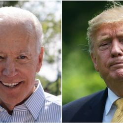 Trump Offers Absurd Excuse For Calling Joe Biden A 'Low IQ