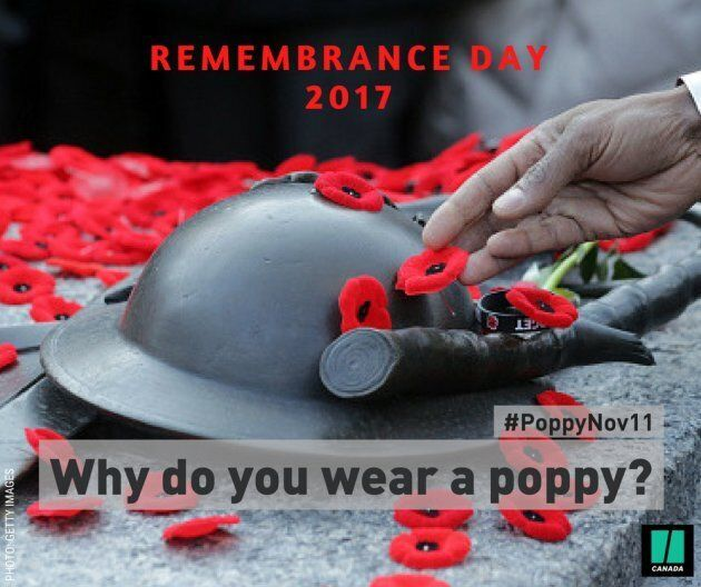 Remembrance Day: Why Do You Wear A