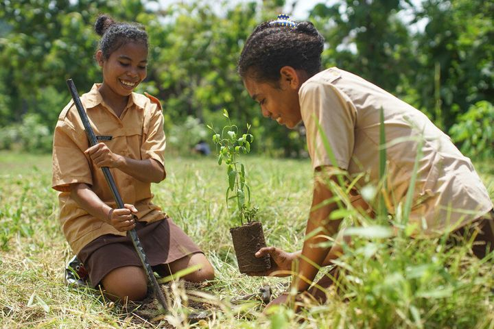 Girls plant tree saplings at school in Indonesia.