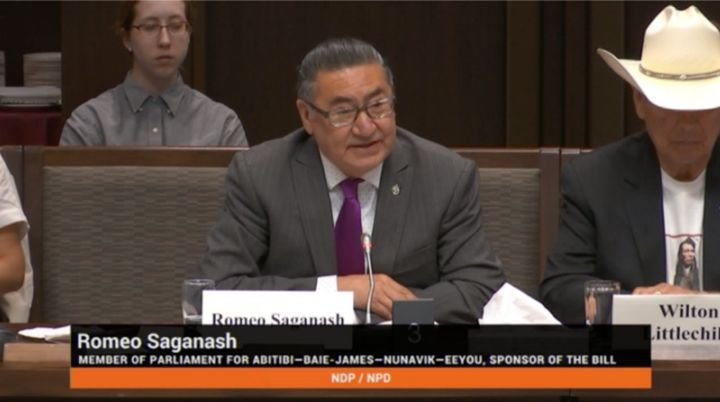 NDP MP Romeo Saganash speaks about Bill C-262 at a Senate standing committee on Aboriginal peoples meeting on May 28, 2019.