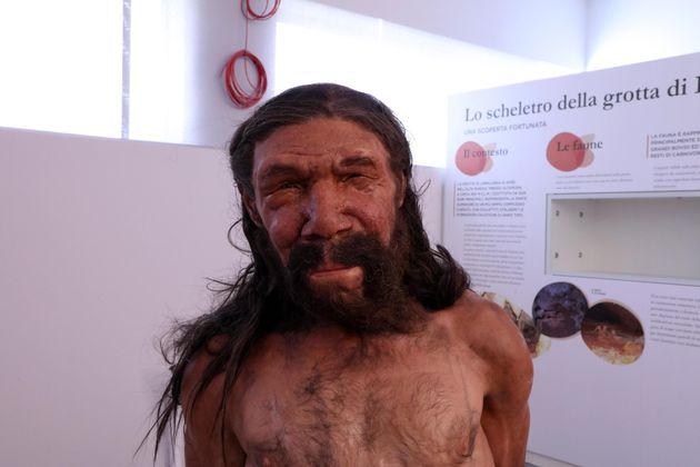 e830e66e865e Neanderthal si estinse per un cambiamento del campo magnetico terrestre e  per i raggi