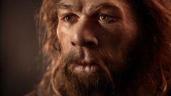 Grand mystère de la science, la fin de Neandertal expliquée par des