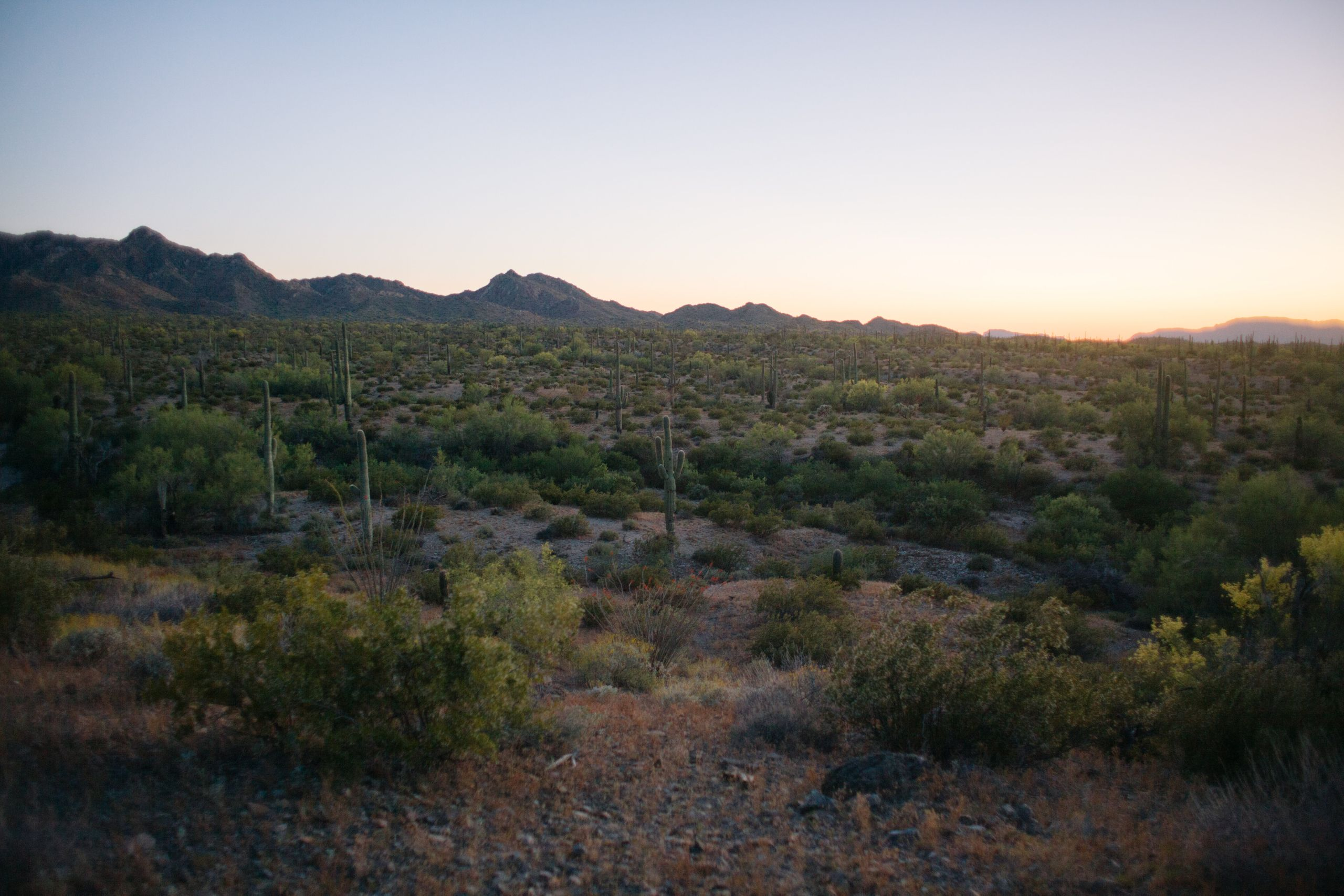 The Cabeza Prieta Wilderness is protected land.