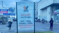 Ρωσία: Ο «δωρεάν ευνουχισμός για τους άπιστους συζύγους» έφερε θύελλα