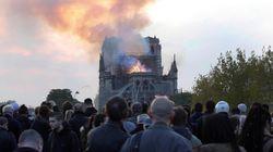 Dopo il rogo di Notre Dame, piombo nel sangue di un bimbo. Test ai