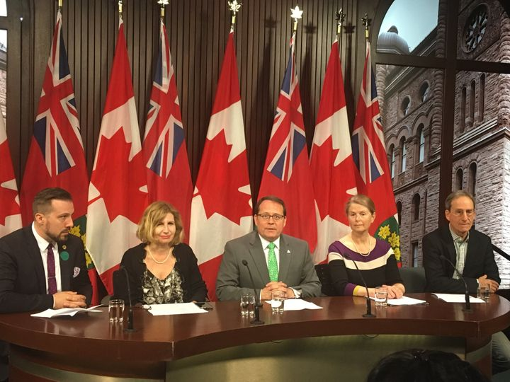 NDP MPP Ian Arthur, Liberal MPP Nathalie Des Rosier, Green MPP Mike Schreiner, Ontario Nature's Anne Bell and Windmill Development's Alex Spiegel hold a press conference at Queen's Park on Tuesday.