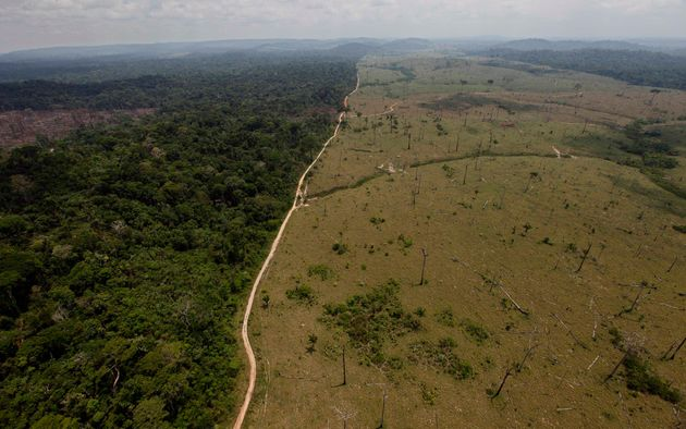 Deforestación en la zona de Novo Progresso, en el estado brasileño de Para, en una imagen...