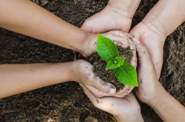 Una giornata per l'ambiente, cioè per la sopravvivenza del genere