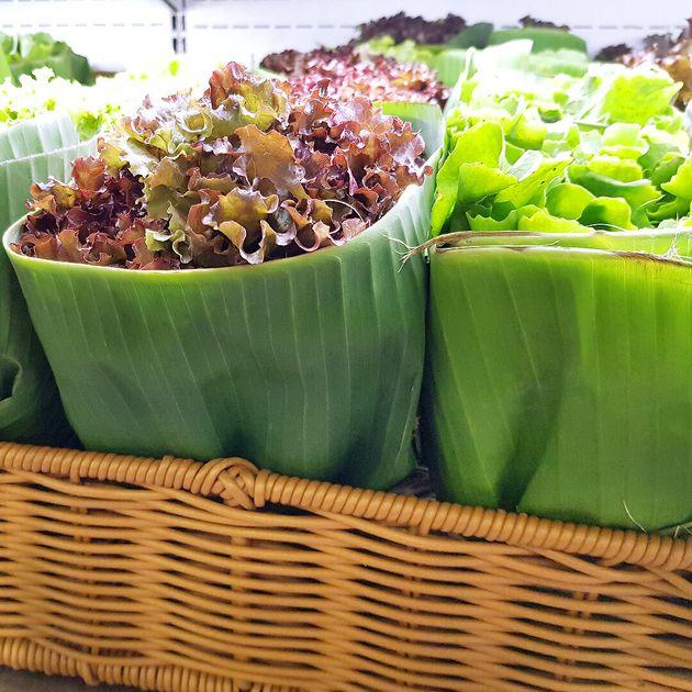 Por enquanto, o supermercado brasileiro está usando o material para embalar
