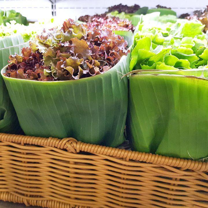 Por enquanto, o supermercado brasileiro está usando o material para embalar verduras.