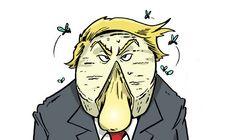 BLOG - Pourquoi Donald Trump plaît de plus en plus aux