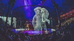 Το τσίρκο που κάνει τη διαφορά και με έναν έξυπνο τρόπο βάζει τέλος στους βασανισμούς των