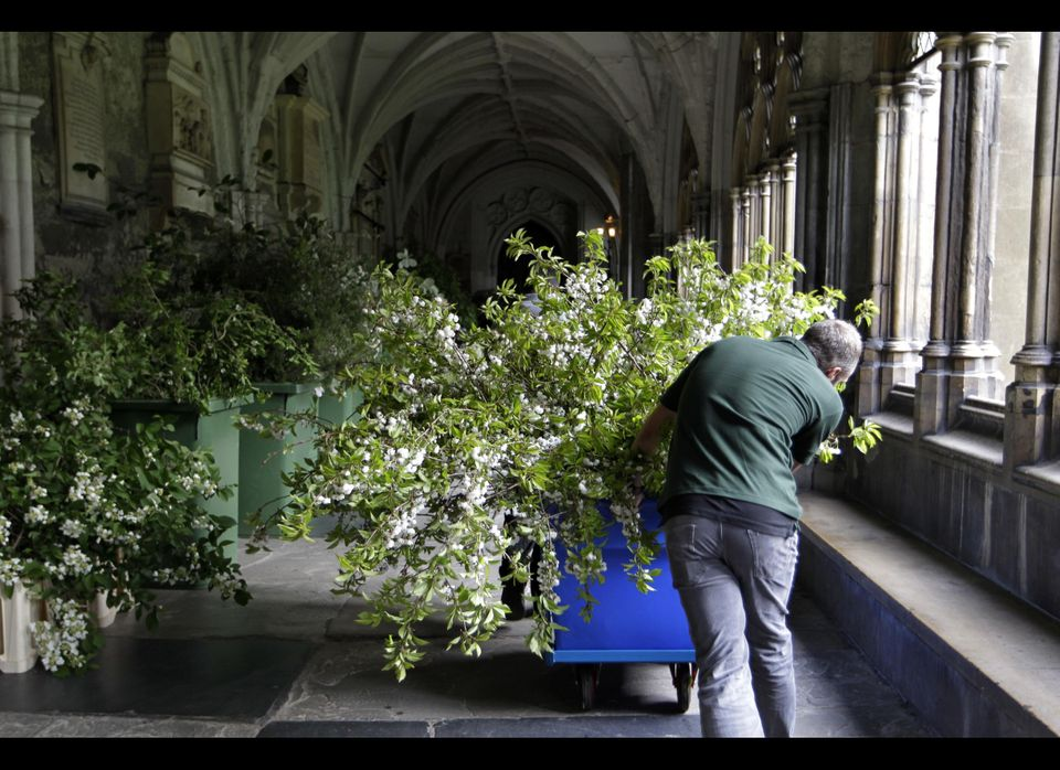 Florists deliver flowers and plants to Westminster Abbey in preparation for the Royal Wedding.