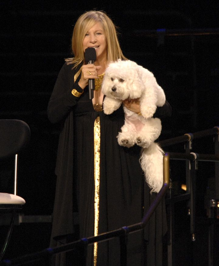 Barbra Streisand and her dog Sammie on tour in 2006.