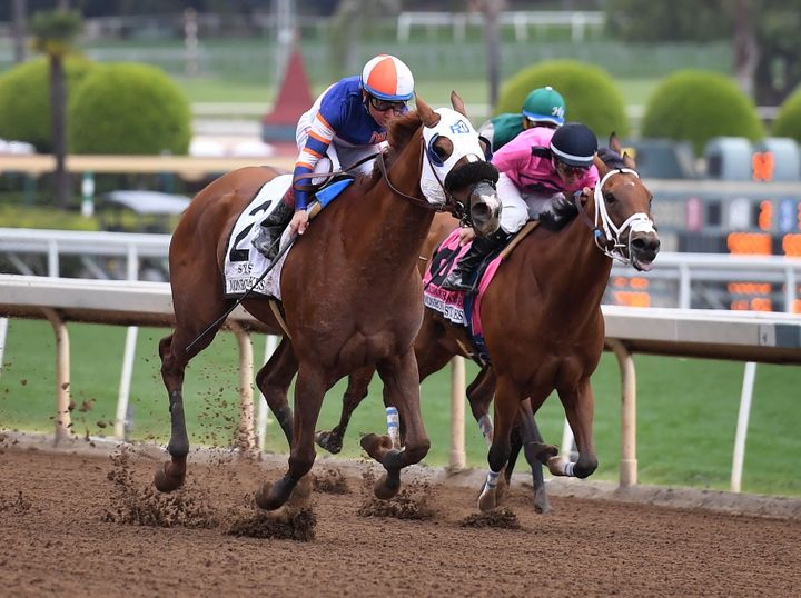 Horses race at Santa Anita in late May as controversy continues over the high number of horse deaths at the track in Arcadia,