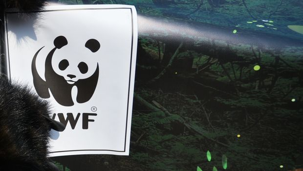 A WWF logo seen on a poster during a protest. as people dressed as a forest animals gathered on Krakow's Main Square during 'Save the Heart of the Carpathians Mountains' protest, as a part of the 'Earth Hour' global movement for the environment, organized by WWF. On Saturday, March 3, 2018, in Krakow, Poland. (Photo by Artur Widak/NurPhoto via Getty Images)