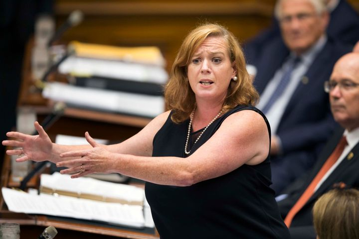 Social Services Minister Lisa MacLeod during question period at Queen's Park last summer. One of her first moves was to cancel the basic income pilot project.