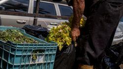 Saisie de près de 71 tonnes de produits alimentaires impropres à la consommation durant le mois de