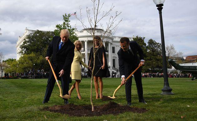 Donald Trump, Brigitte Macron, Melania Trump et Emmanuel Macron plantent un chêne dans les jardins...