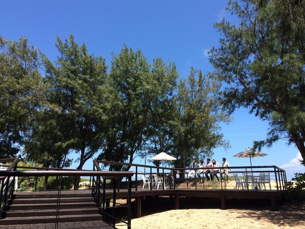 林投公園園內有綠蔭,不怕日曬。(圖/澎湖國家風景區)
