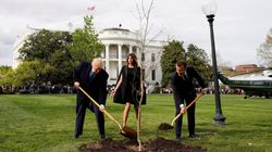 The 'Friendship Tree' Planted By Trump And Macron Has