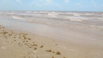 The beaches of Galveston Island
