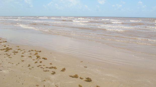 The beaches of Galveston Island