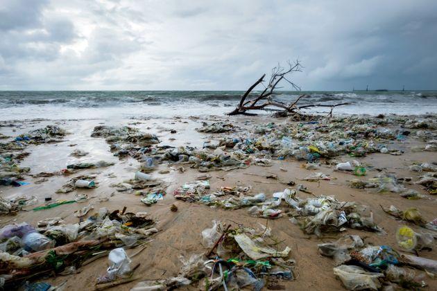 プラスチックゴミによる海洋・海岸汚染