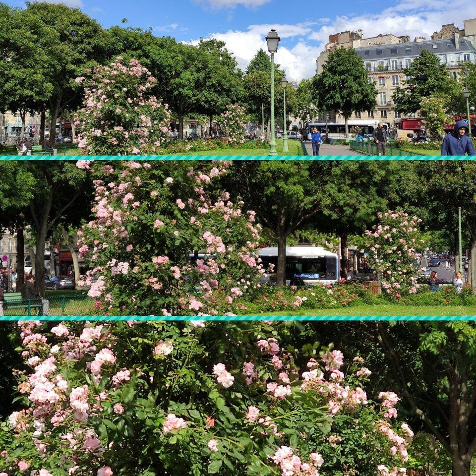Trois photos prises par le Xiaomi Mi 9t avec, de haut en bas, un zoom x1, x2 et