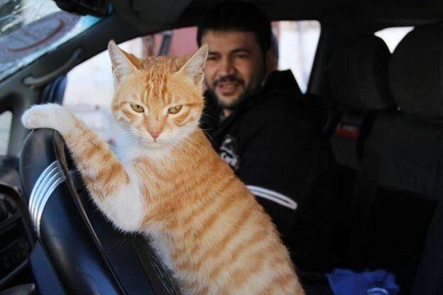Από τη Συρία με Αγάπη - Συνέντευξη με τον «Cat Man