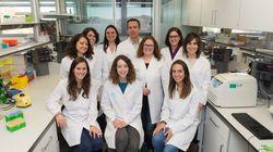 Un equipo español crea un fármaco que evita la metástasis y reduce el tamaño de los