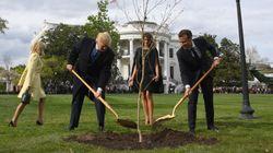 Emmanuel Macron assure qu'il va renvoyer un arbre à Donald