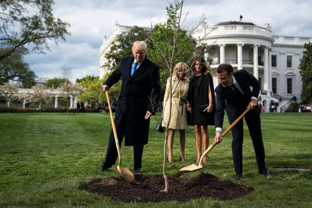 President Donald Trump and French President Emmanuel Macron planted a tree as first ladies Melania Trump...