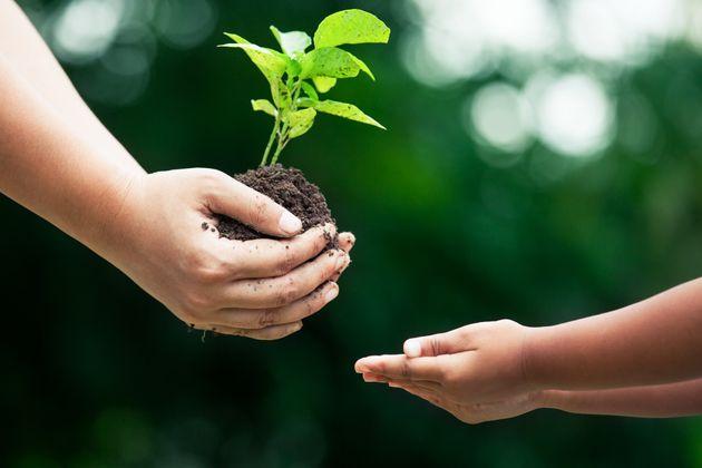L'Italia libera dai pesticidi comincia dai Comuni. Norme e incentivi a tutela dei