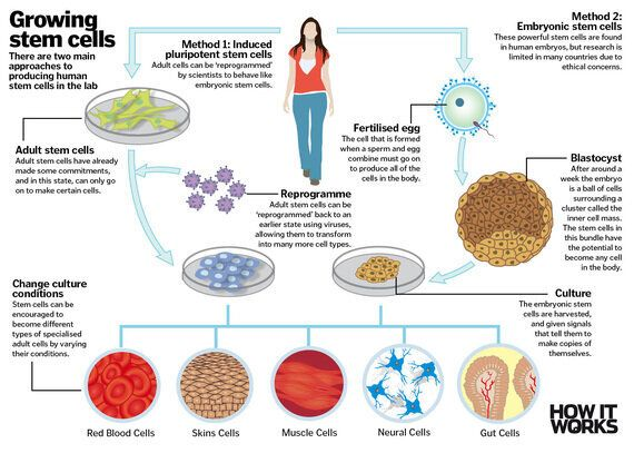 Miracle Science - Six Amazing Medical
