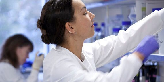 You Can't Take the Risk Out of Cancer Research, So Why Are We Even Trying