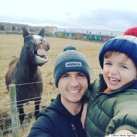 Smiling Horse Selfie Row Sees Owner's Complaint Ignored By Thomson