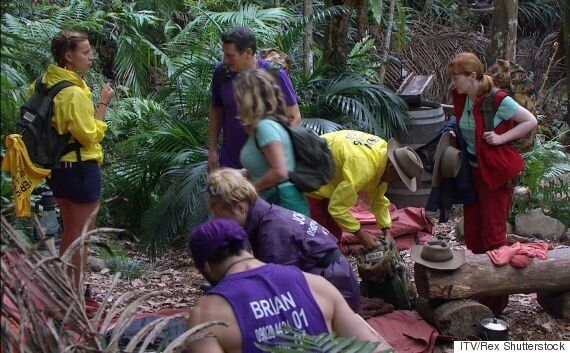 'I'm A Celebrity' Contestants 'Evacuate Jungle Camp', Due To Extreme Weather Down