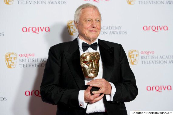 Terry Wogan Was Once Turned Down For BBC Job By Sir David Attenborough, Letters
