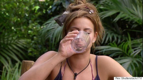 'I'm A Celebrity' Faces Cruelty Accusations, After Ferne McCann Eats A Live Spider In Bushtucker Trial
