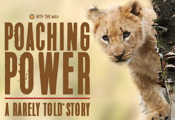 Poaching Power: A Rarely Told