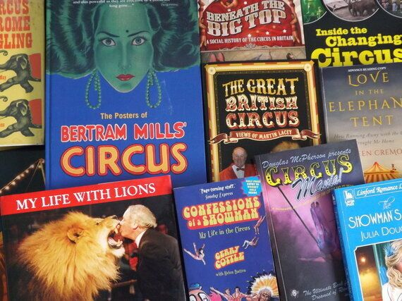 Book Review: The Enemy Within by Gary Nott - a circus adventure with a 70s