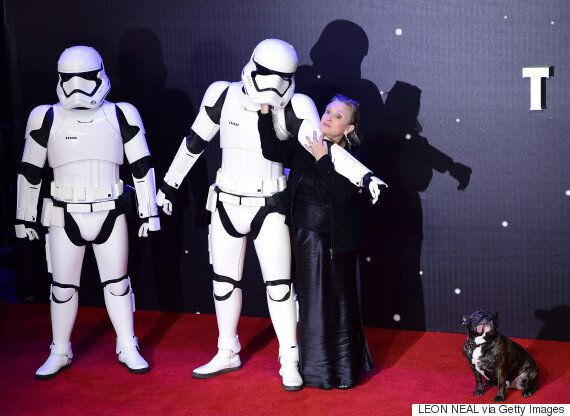 'Star Wars: The Force Awakens' Star Carrie Fisher Poses With Stormtroopers (And Her Dog, Gary, Obv) At...