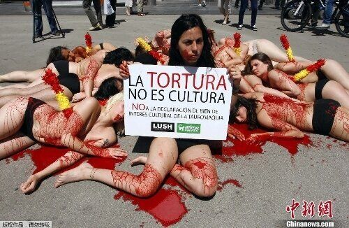Bullfighting in Spain: Still in the Political
